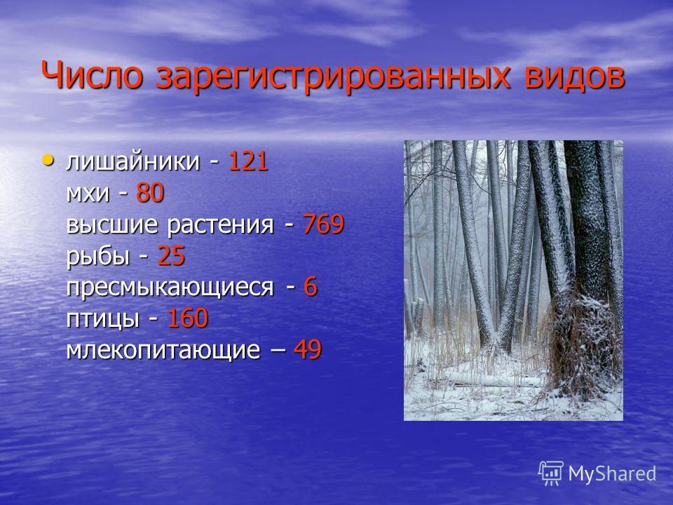 Число зарегистрированных видов лишайники - 121 мхи - 80 высшие растения - 769 рыбы - 25 пресмыкающиеся - 6 птицы - 160 млекопитающие – 49 лишайники - 121 мхи - 80 высшие растения - 769 рыбы - 25 пресмыкающиеся - 6 птицы - 160 млекопитающие – 49
