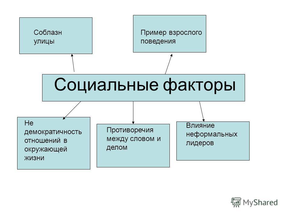 Социальные факторы Не демократичность отношений в окружающей жизни Противоречия между словом и делом Влияние неформальных лидеров Соблазн улицы Пример взрослого поведения