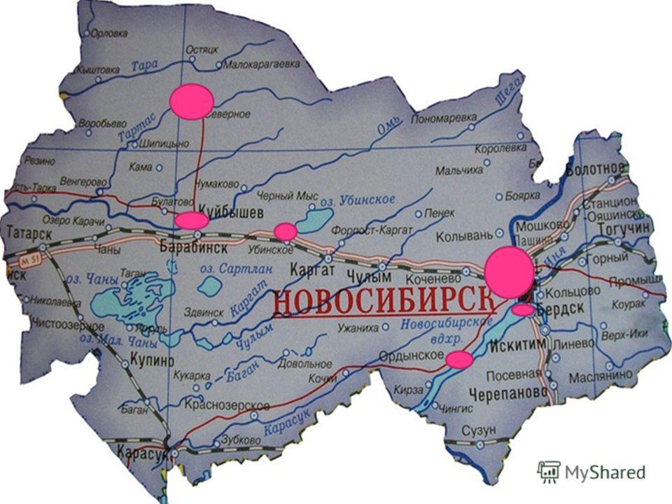 Наши выпускники – жители Новосибирской области