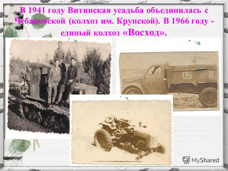 В 1941 году Витинская усадьба объединилась с Чебаковской (колхоз им. Крупской). В 1966 году - единый колхоз «Восход».