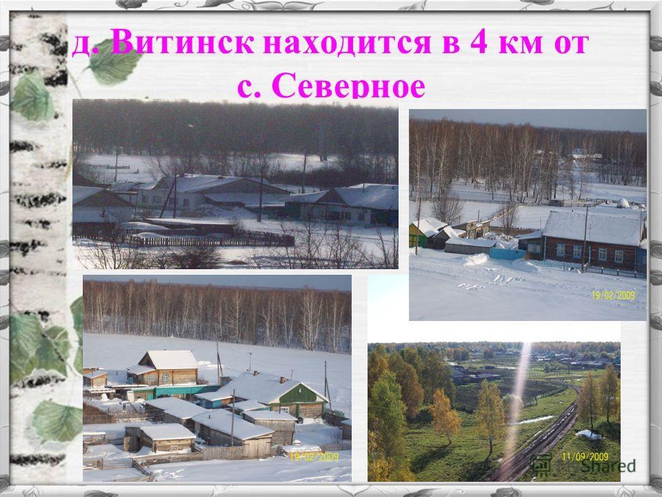 д. Витинск находится в 4 км от с. Северное