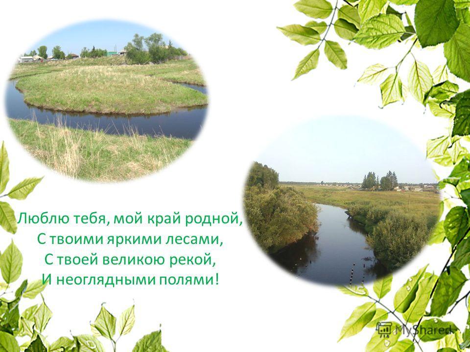 Люблю тебя, мой край родной, С твоими яркими лесами, С твоей великою рекой, И неоглядными полями!