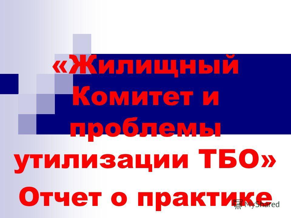 «Жилищный Комитет и проблемы утилизации ТБО» Отчет о практике Романовский В.А.