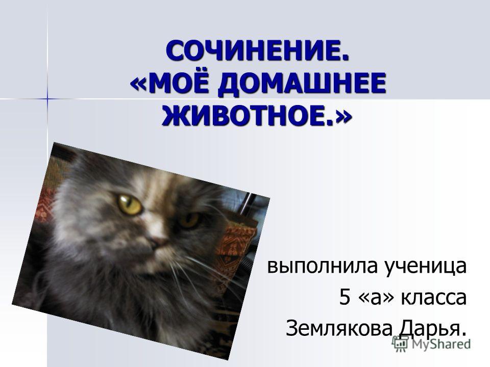 Сочинение описание кот 3 класс