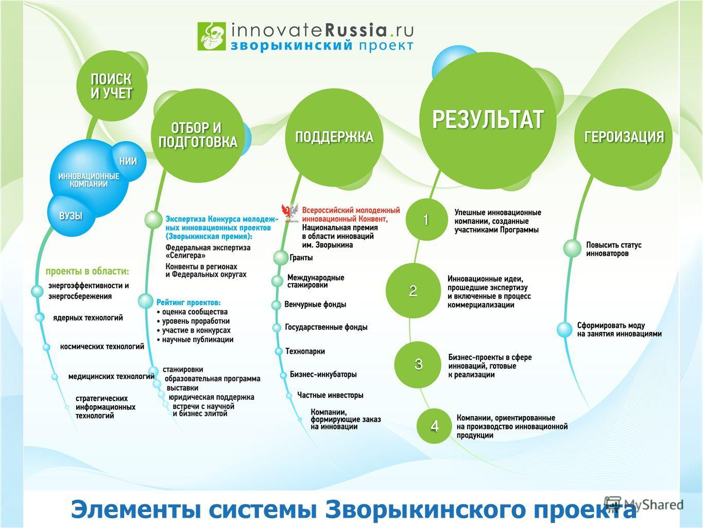 Элементы системы Зворыкинского проекта