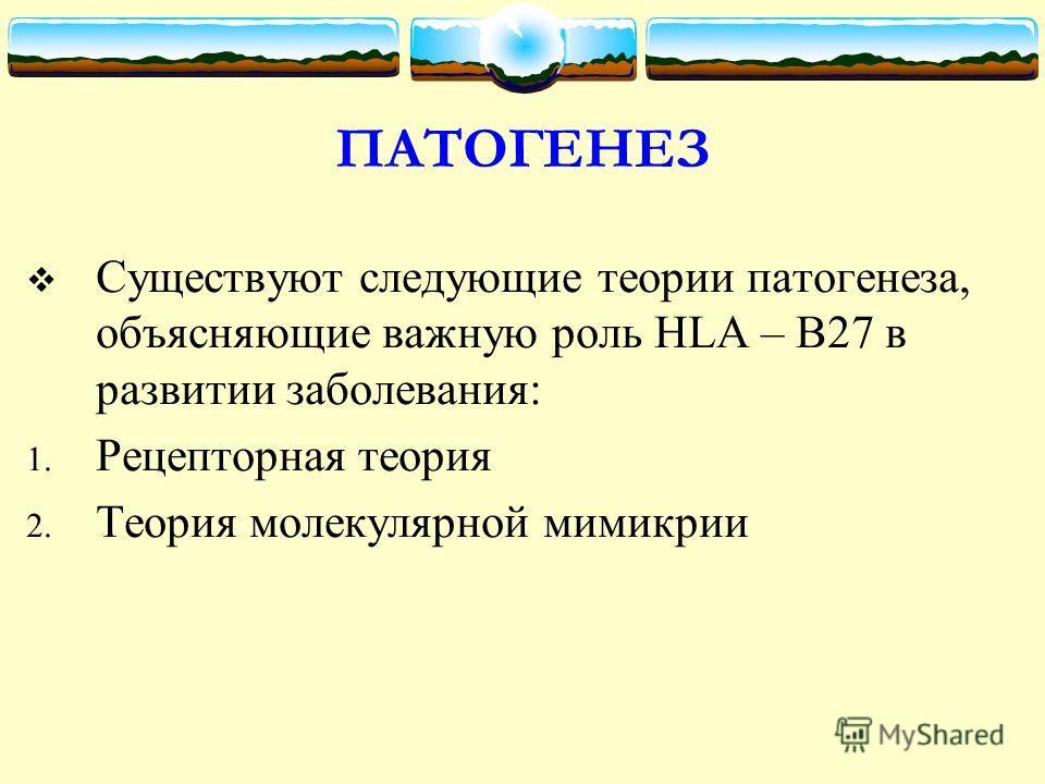 ПАТОГЕНЕЗ Существуют следующие теории патогенеза, объясняющие важную роль HLA – В27 в развитии заболевания: 1. Рецепторная теория 2. Теория молекулярной мимикрии