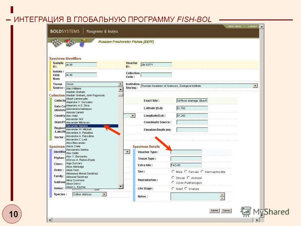 10 ИНТЕГРАЦИЯ В ГЛОБАЛЬНУЮ ПРОГРАММУ FISH-BOL (2006-2007)