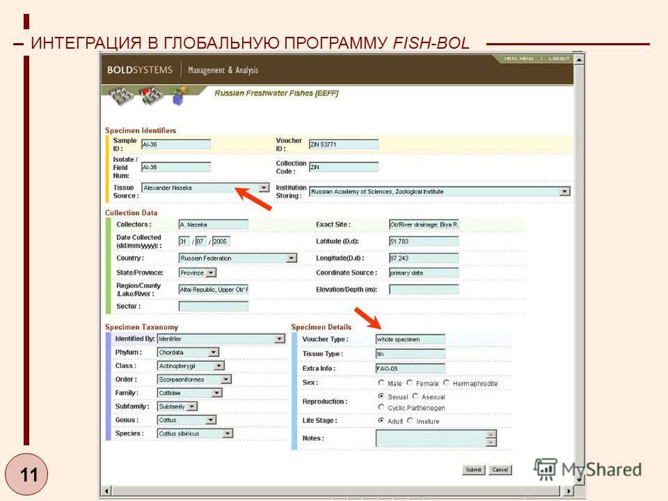 11 ИНТЕГРАЦИЯ В ГЛОБАЛЬНУЮ ПРОГРАММУ FISH-BOL (2006-2007)