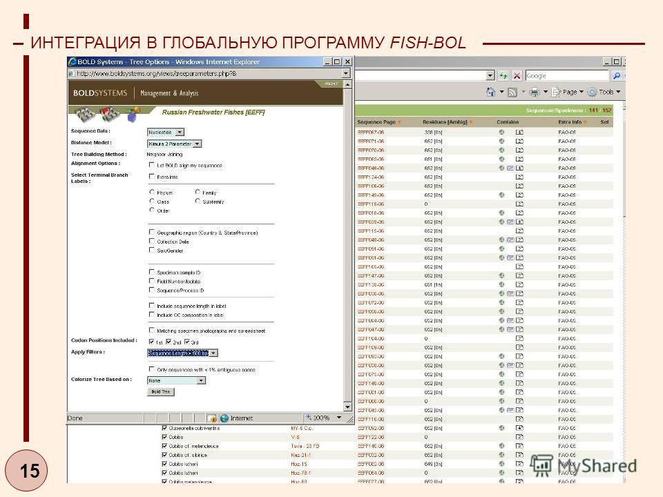 15 ИНТЕГРАЦИЯ В ГЛОБАЛЬНУЮ ПРОГРАММУ FISH-BOL