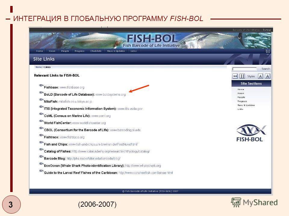 3 ИНТЕГРАЦИЯ В ГЛОБАЛЬНУЮ ПРОГРАММУ FISH-BOL (2006-2007)