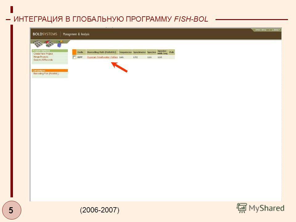 5 ИНТЕГРАЦИЯ В ГЛОБАЛЬНУЮ ПРОГРАММУ FISH-BOL (2006-2007)