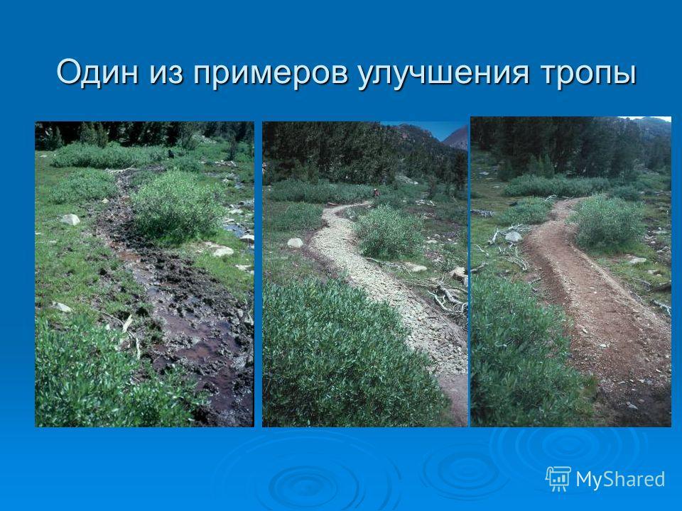 Один из примеров улучшения тропы