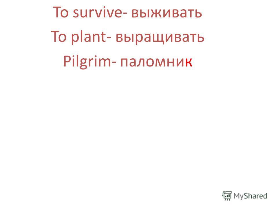 To survive- выживать To plant- выращивать Pilgrim- паломник