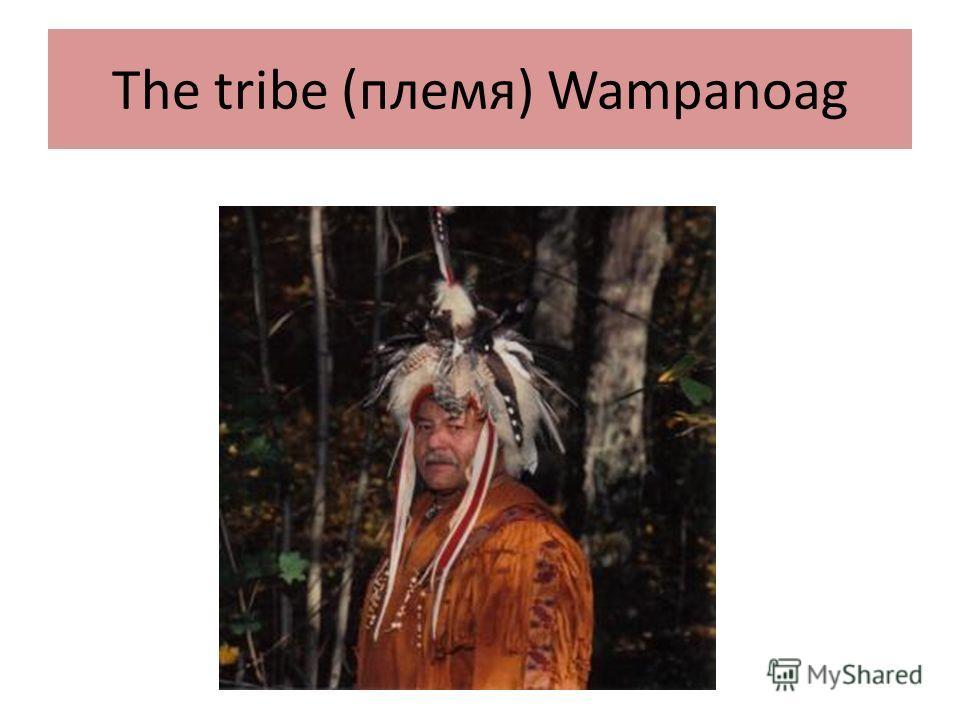 The tribe (племя) Wampanoag