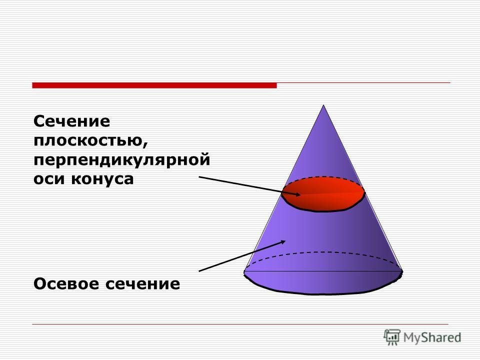 Сечение плоскостью, перпендикулярной оси конуса Осевое сечение