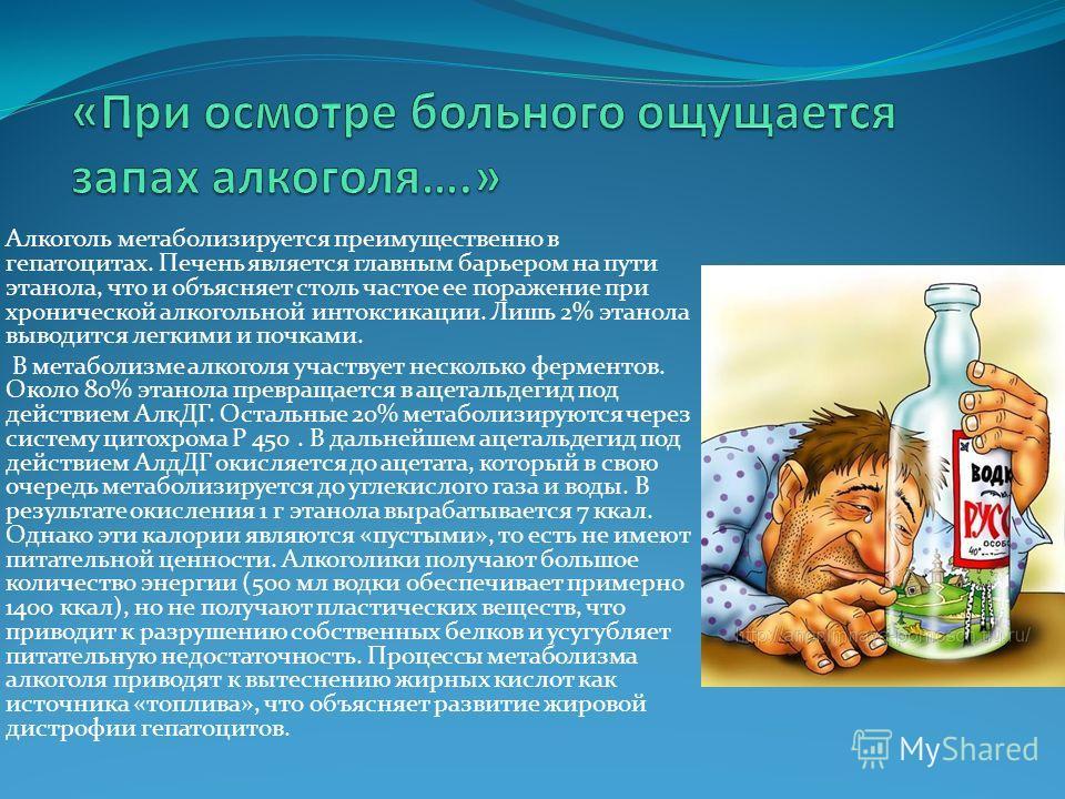 Алкоголь метаболизируется преимущественно в гепатоцитах. Печень является главным барьером на пути этанола, что и объясняет столь частое ее поражение при хронической алкогольной интоксикации. Лишь 2% этанола выводится легкими и почками. В метаболизме