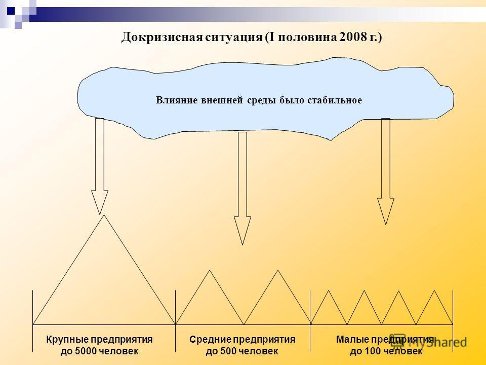 Влияние внешней среды было стабильное Крупные предприятия до 5000 человек Средние предприятия до 500 человек Малые предприятия до 100 человек Докризисная ситуация (I половина 2008 г.)