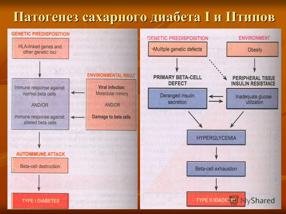 Патогенез сахарного диабета I и IIтипов