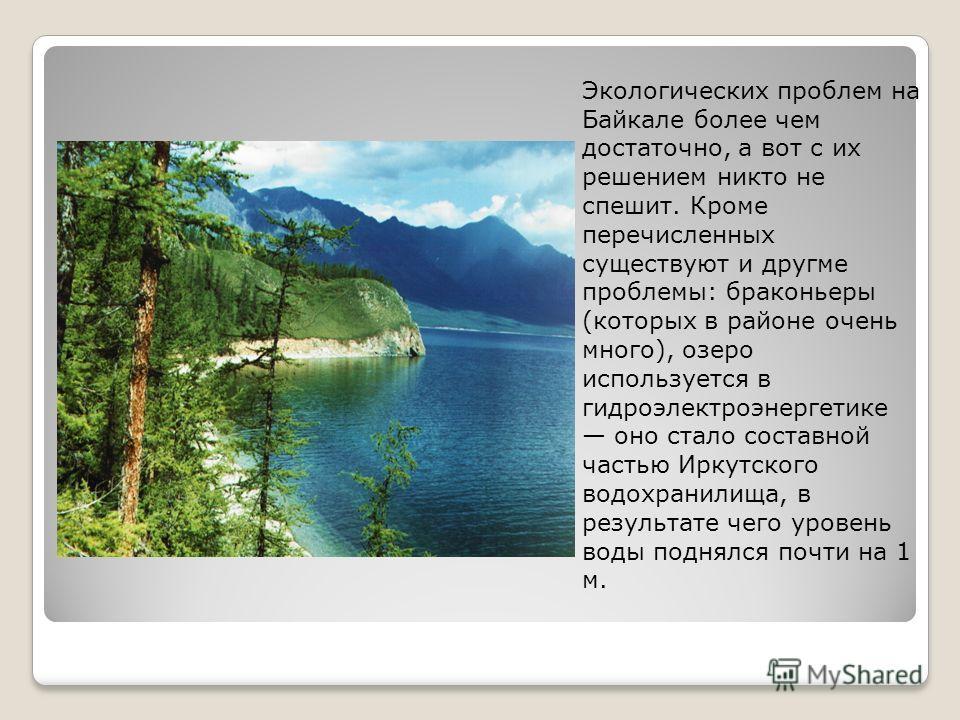Экологических проблем на Байкале более чем достаточно, а вот с их решением никто не спешит. Кроме перечисленных существуют и другме проблемы: браконьеры (которых в районе очень много), озеро используется в гидроэлектроэнергетике оно стало составной ч