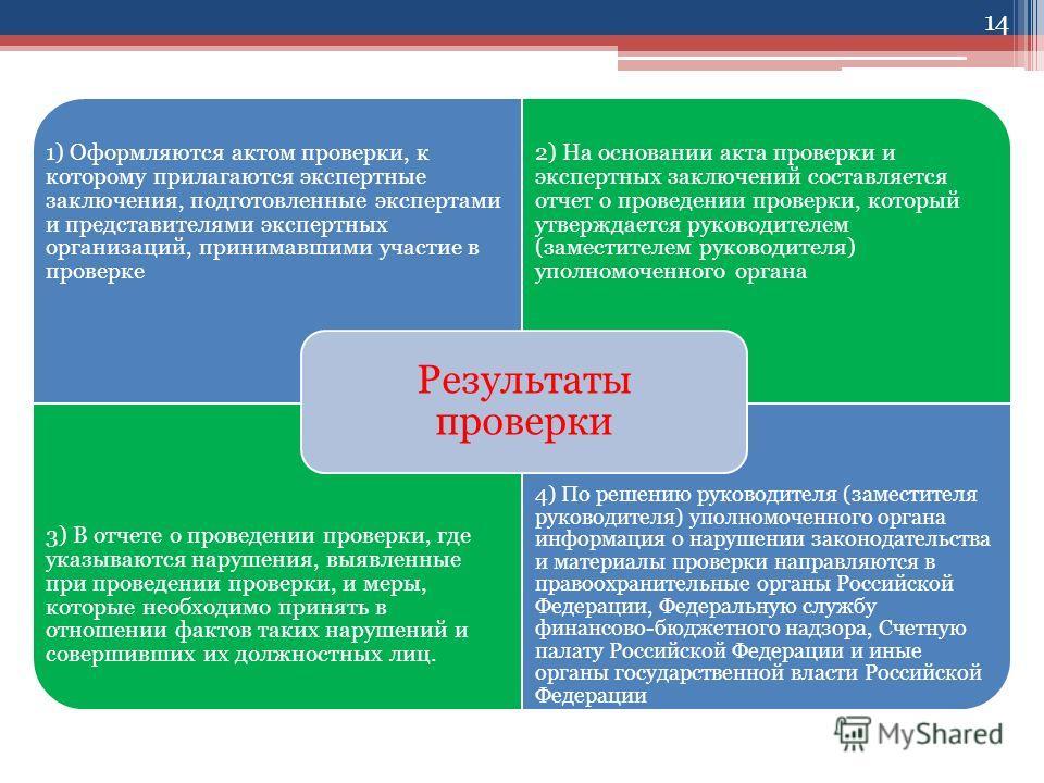 1) Оформляются актом проверки, к которому прилагаются экспертные заключения, подготовленные экспертами и представителями экспертных организаций, принимавшими участие в проверке 2) На основании акта проверки и экспертных заключений составляется отчет