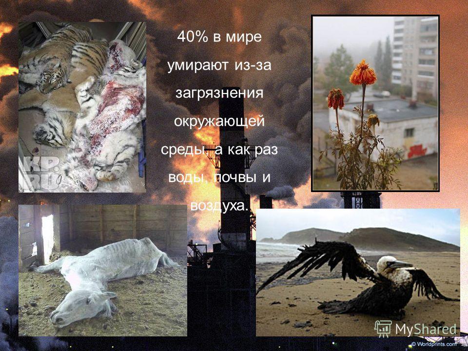 40% в мире умирают из-за загрязнения окружающей среды, а как раз воды, почвы и воздуха.