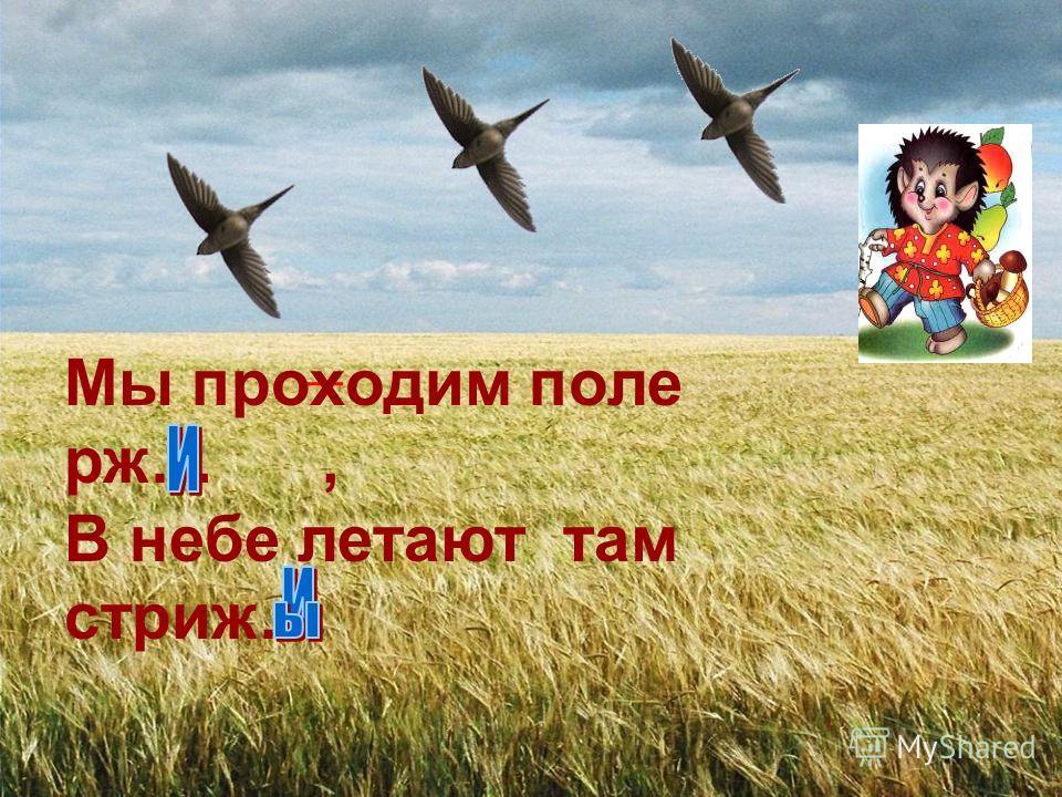 Мы проходим поле рж…, В небе летают там стриж…