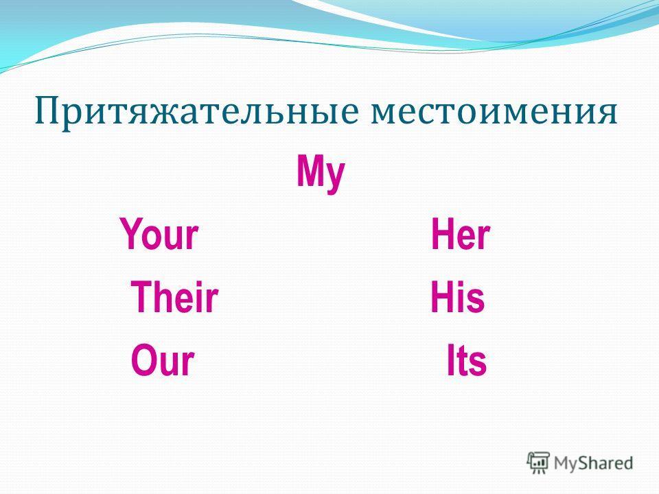 Притяжательные местоимения My Your Her Their His Our Its