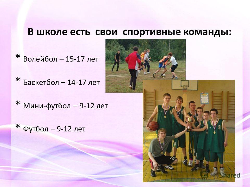 В школе есть свои спортивные команды: * Волейбол – 15-17 лет * Баскетбол – 14-17 лет * Мини-футбол – 9-12 лет * Футбол – 9-12 лет
