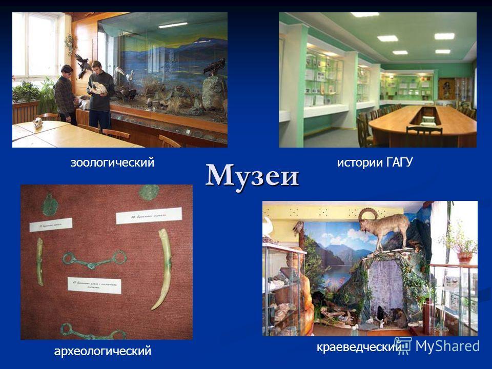 Музеи археологический краеведческий зоологическийистории ГАГУ