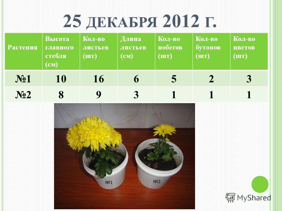 25 ДЕКАБРЯ 2012 Г. Растения Высота главного стебля (см) Кол-во листьев (шт) Длина листьев (см) Кол-во побегов (шт) Кол-во бутонов (шт) Кол-во цветов (шт) 110166523 2893111