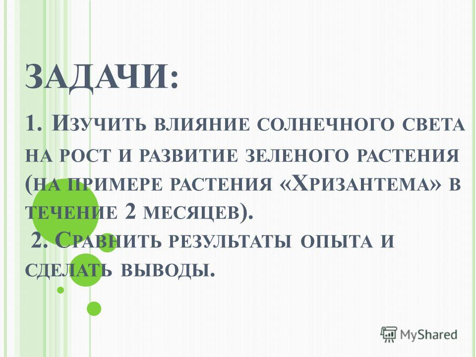 ЗАДАЧИ: 1. И ЗУЧИТЬ ВЛИЯНИЕ СОЛНЕЧНОГО СВЕТА НА РОСТ И РАЗВИТИЕ ЗЕЛЕНОГО РАСТЕНИЯ ( НА ПРИМЕРЕ РАСТЕНИЯ «Х РИЗАНТЕМА » В ТЕЧЕНИЕ 2 МЕСЯЦЕВ ). 2. С РАВНИТЬ РЕЗУЛЬТАТЫ ОПЫТА И СДЕЛАТЬ ВЫВОДЫ.
