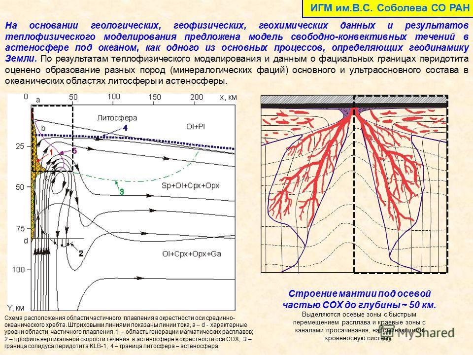 На основании геологических, геофизических, геохимических данных и результатов теплофизического моделирования предложена модель свободно-конвективных течений в астеносфере под океаном, как одного из основных процессов, определяющих геодинамику Земли.