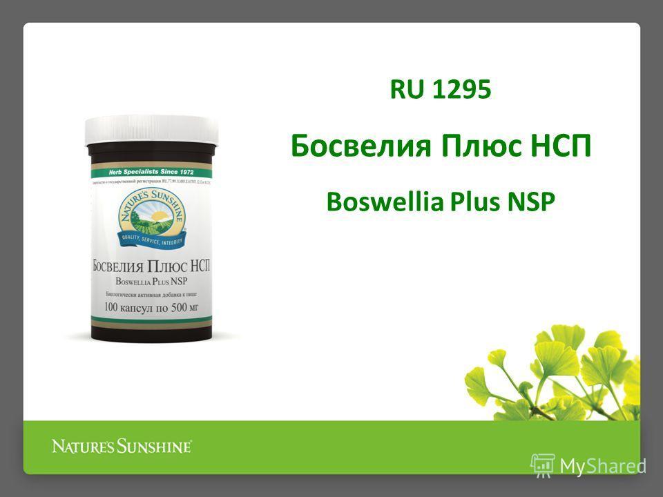 RU 1295 Босвелия Плюс НСП Boswellia Plus NSP