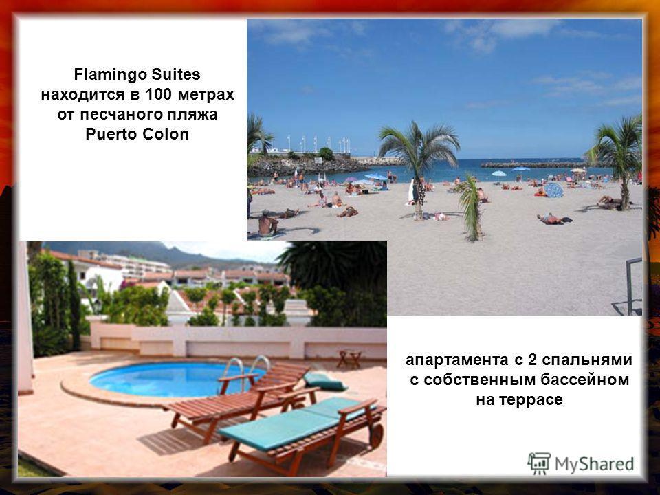 апартамента с 2 спальнями с собственным бассейном на террасе Flamingo Suites находится в 100 метрах от песчаного пляжа Puerto Colon