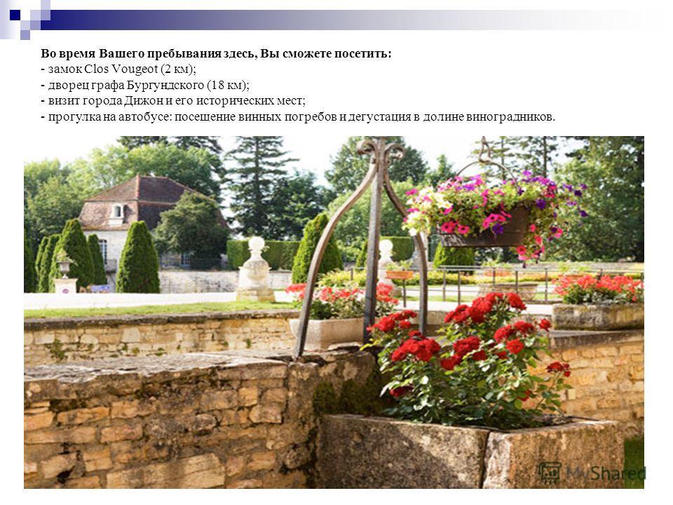 Во время Вашего пребывания здесь, Вы сможете посетить: - замок Clos Vougeot (2 км); - дворец графа Бургундского (18 км); - визит города Дижон и его исторических мест; - прогулка на автобусе: посещение винных погребов и дегустация в долине виноградник
