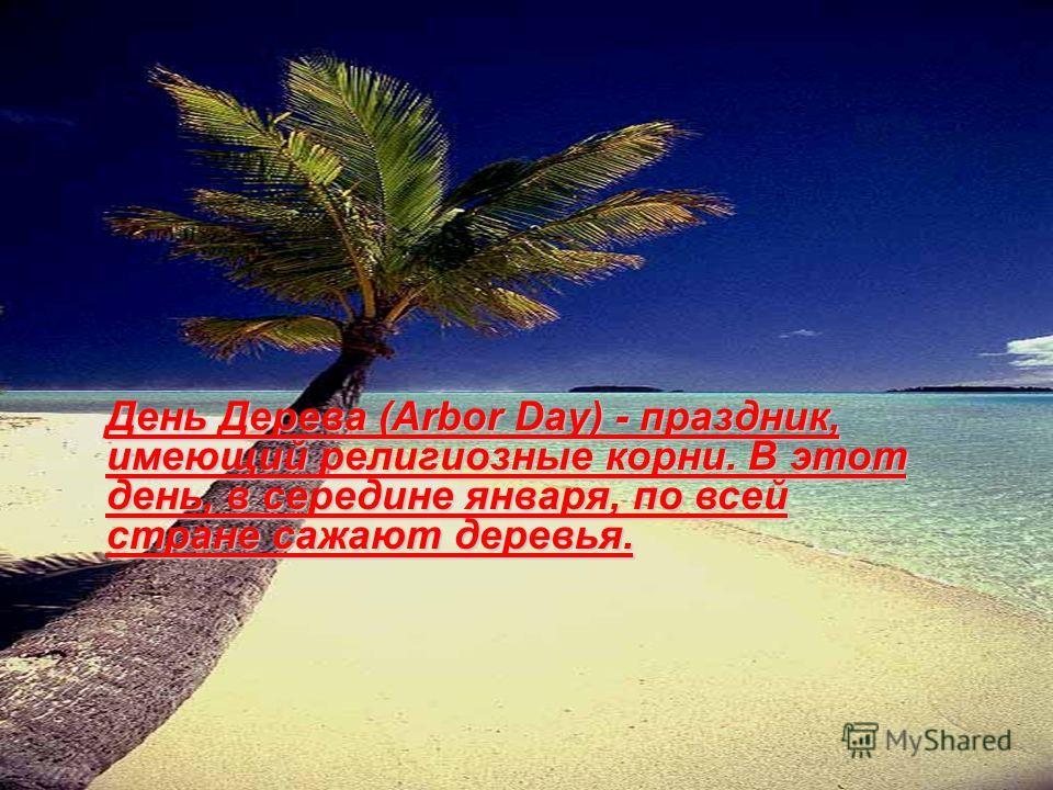 День Дерева (Arbor Day) - праздник, имеющий религиозные корни. В этот день, в середине января, по всей стране сажают деревья.