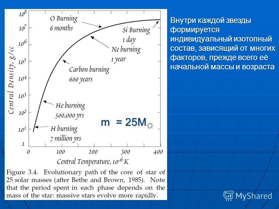 m = 25M m = 25M Внутри каждой звезды формируется индивидуальный изотопный состав, зависящий от многих факторов, прежде всего её начальной массы и возраста