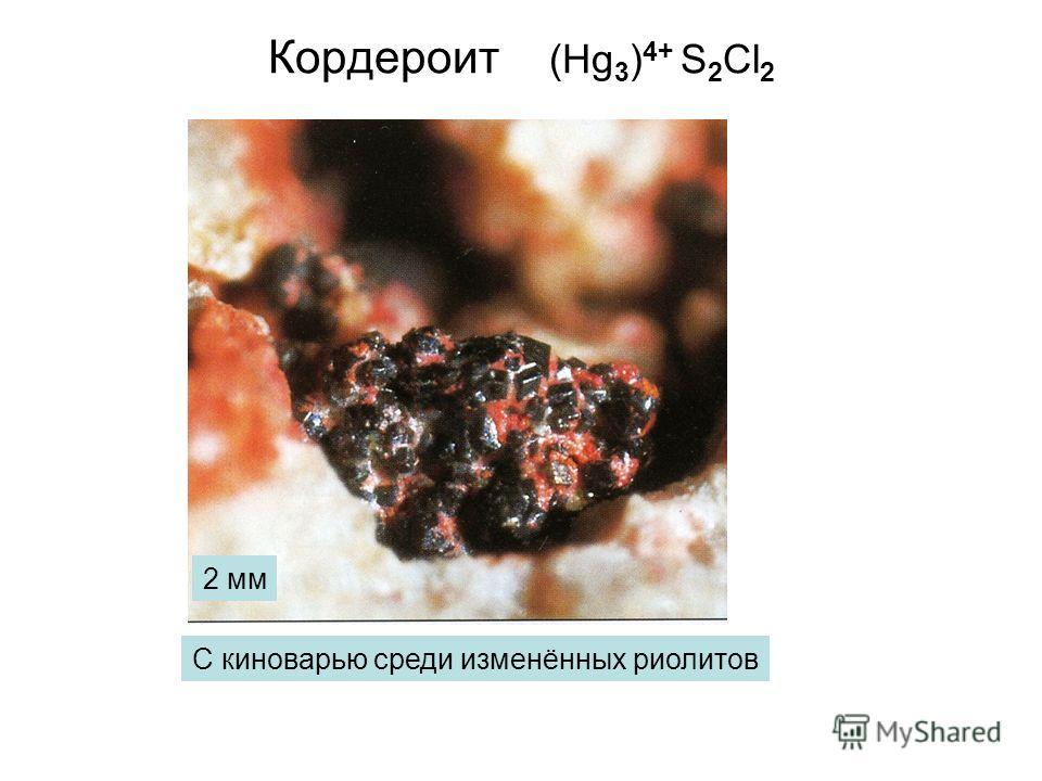 Кордероит (Hg 3 ) 4+ S 2 Cl 2 С киноварью среди изменённых риолитов 2 мм
