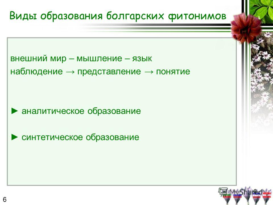 6 Виды образования болгарских фитонимов внешний мир – мышление – язык наблюдение представление понятие аналитическое образование синтетическое образование 6