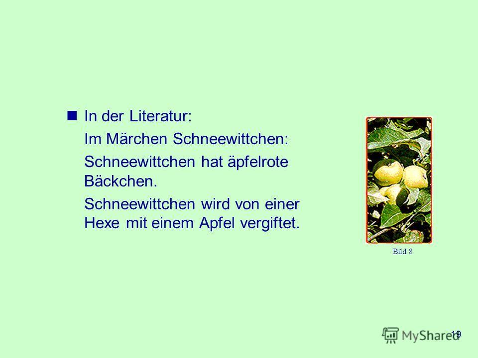 19 In der Literatur: Im Märchen Schneewittchen: Schneewittchen hat äpfelrote Bäckchen. Schneewittchen wird von einer Hexe mit einem Apfel vergiftet. Bild 8