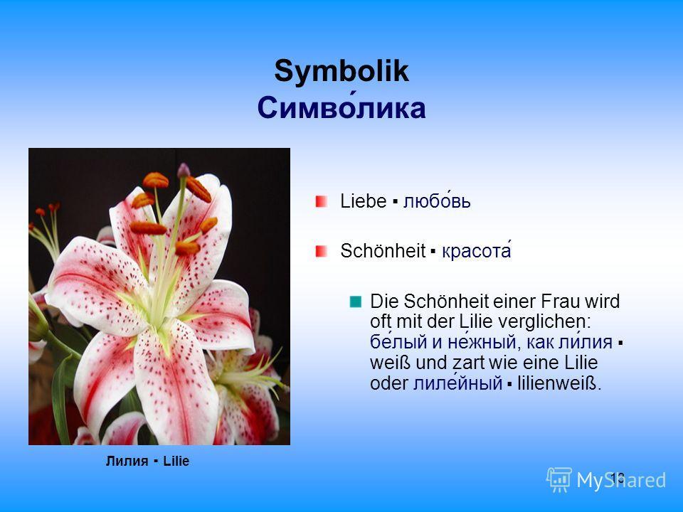 13 Symbolik Cимволика Лилия Lilie Liebe любовь Schönheit красота Die Schönheit einer Frau wird oft mit der Lilie verglichen: белый и нежный, как лилия weiß und zart wie eine Lilie oder лилейный lilienweiß.