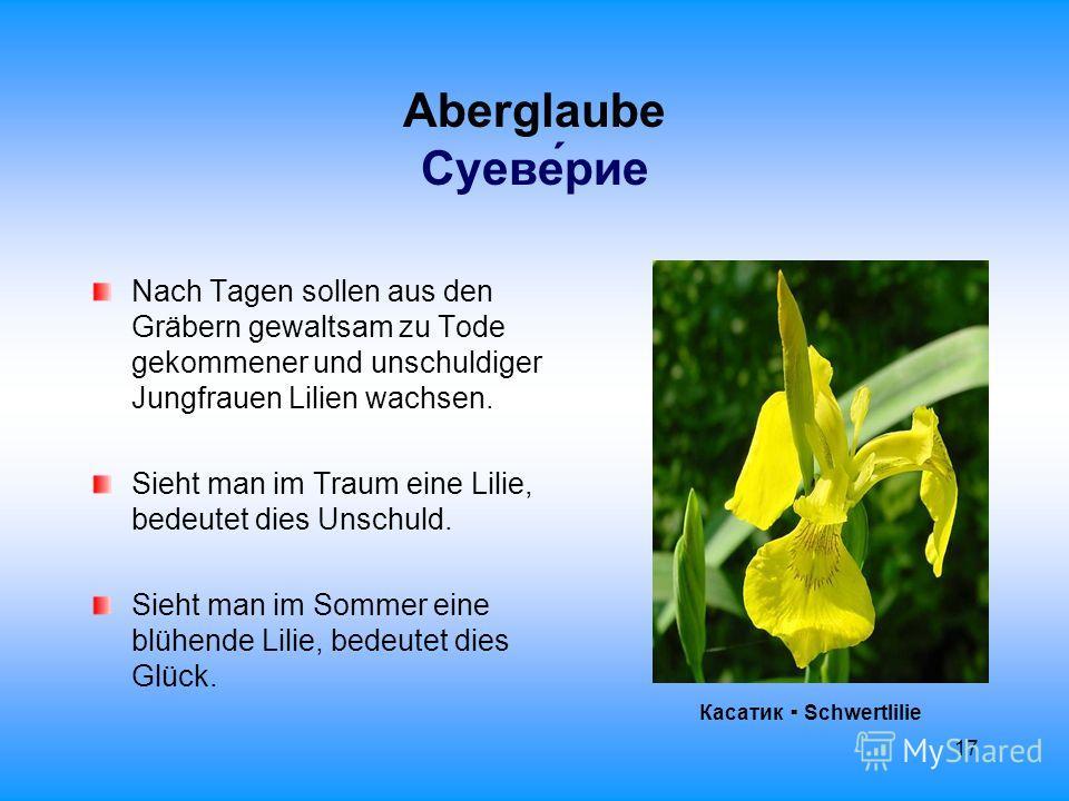 17 Aberglaube Суеверие Nach Tagen sollen aus den Gräbern gewaltsam zu Tode gekommener und unschuldiger Jungfrauen Lilien wachsen. Sieht man im Traum eine Lilie, bedeutet dies Unschuld. Sieht man im Sommer eine blühende Lilie, bedeutet dies Glück. Кас