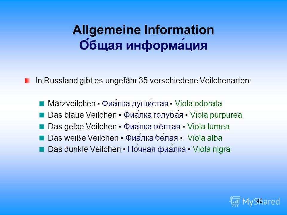 42 Allgemeine Information О́бщая информа́ция In Russland gibt es ungefähr 35 verschiedene Veilchenarten: Märzveilchen Фиа́лка душистая Viola odorata Das blaue Veilchen Фиа́лка голуба́я Viola purpurea Das gelbe Veilchen Фиа́лка жёлтая Viola lumea Das