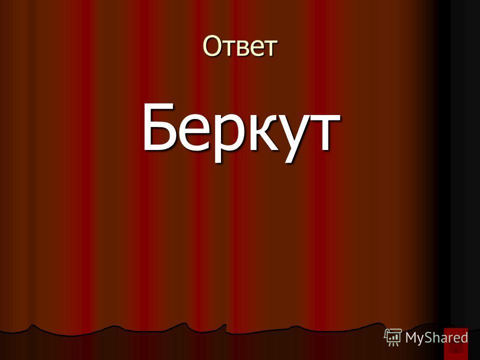 Ответ Беркут
