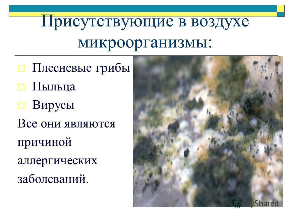 Присутствующие в воздухе микроорганизмы: Плесневые грибы Пыльца Вирусы Все они являются причиной аллергических заболеваний.