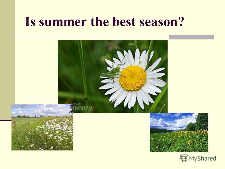 Is summer the best season?