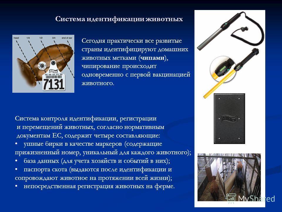 16 Система идентификации животных Система идентификации животных Система контроля идентификации, регистрации и перемещений животных, согласно нормативным документам ЕС, содержит четыре составляющие: ушные бирки в качестве маркеров (содержащие прижизн