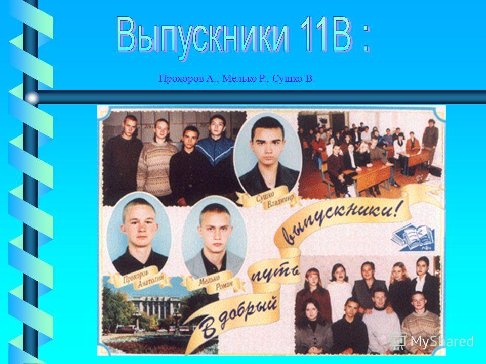 Прохоров А., Мелько Р., Сушко В.