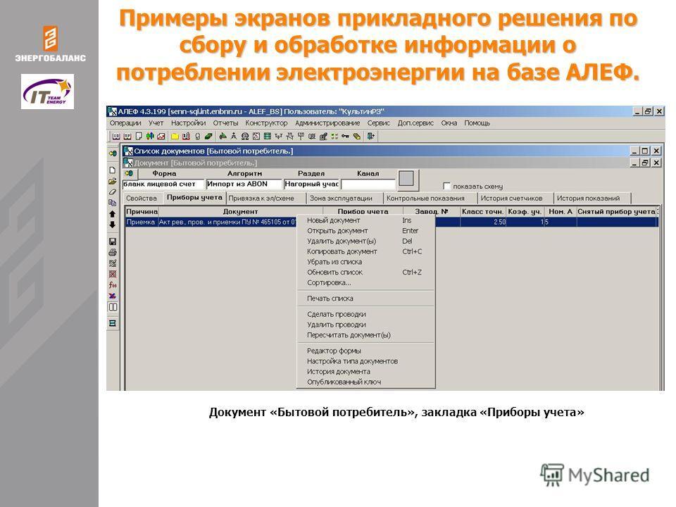 Примеры экранов прикладного решения по сбору и обработке информации о потреблении электроэнергии на базе АЛЕФ. Документ «Бытовой потребитель», закладка «Приборы учета»