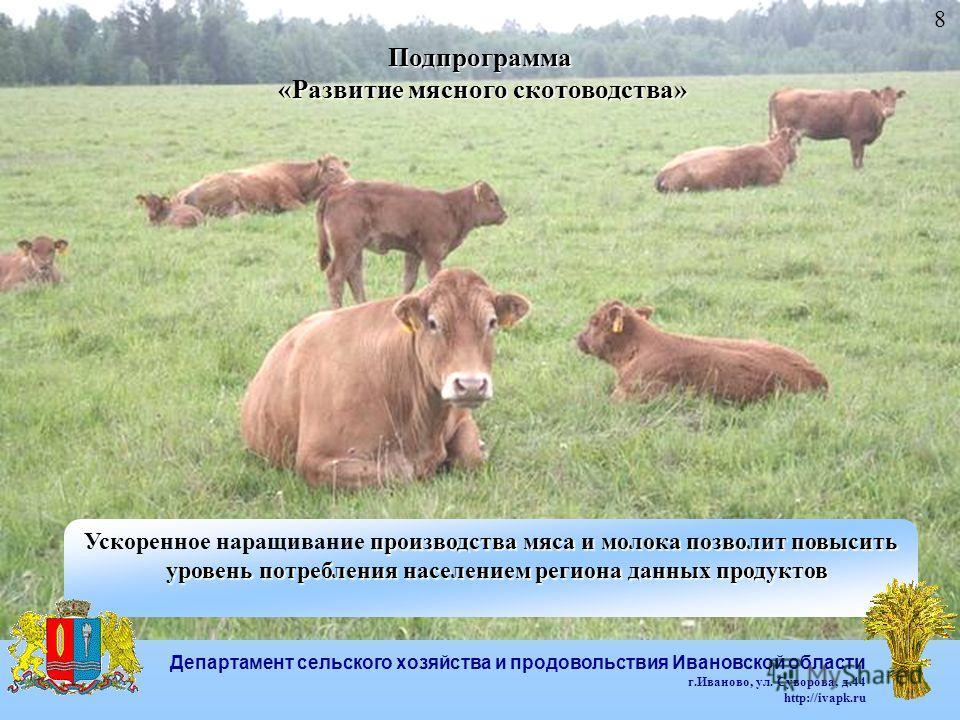 Подпрограмма «Развитие мясного скотоводства» «Развитие мясного скотоводства» 8 производства мяса и молока позволит повысить Ускоренное наращивание производства мяса и молока позволит повысить уровень потребления населением региона данных продуктов ур